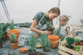 diy mini flower garden pots