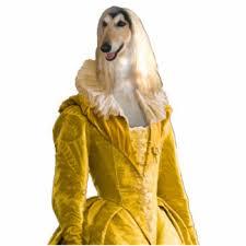 afghan hound fabric afghan hound photo statuettes cutouts u0026 sculptures zazzle