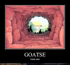 Goatse Meme - goatse compute info
