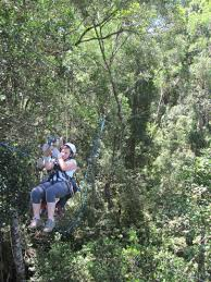 Treetop Canopy Tours by Living Life Breathlessly Treetop Canopy Tours Bucket List Item