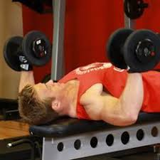 Crush Grip Dumbbell Bench Press The 25 Best Bench Press Ideas On Pinterest Bench Press Weights