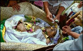 cremation procedure bali healers and balinese ritual purification ceremonies
