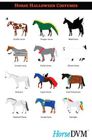 halloween horse 79 best horse halloween costume ideas images on pinterest
