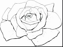 coloring pages with roses coloring pages of real roses image new coloring pages rose print