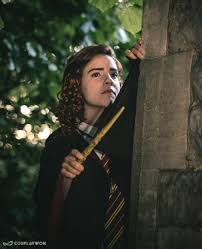 Harry Potter Hermione Granger Harry Potter