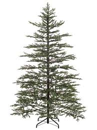 northlight 7 5 norfolk pine artificial tree with clear