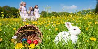 kids easter eggs 7 tips for pulling an epic easter egg hunt huffpost