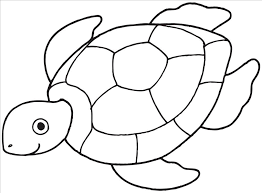 marvelous coloring pages turtle photograph incredible