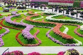 211 best kac dubai miracle garden images on pinterest miracle