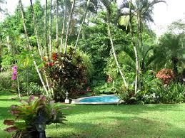 tropical gardens pictures original home designs with garden design