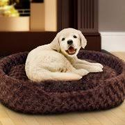 Dog Beds With Cover Petmaker Memory Foam Dog Bed With Removable Cover Brown Walmart Com