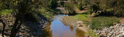 real estate agent south orange county laguna woods realtor