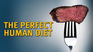 the perfect human diet u2013 watch the full movie diet doctor