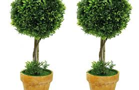 plants for office plant artificial plants for outdoors alluring artificial