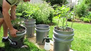 self watering garden containers gardening ideas