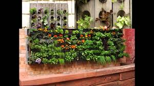 Vertical Gardening by Home Vertical Gardening Vegetables Youtube
