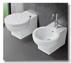 Bidet Define Ditto The Bidet Dual Flushing And Other European Ditto Ables