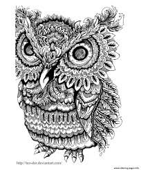 owl big eyes coloring pages printable