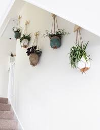 plant wall hangers indoor how to create a wall of plants planters spaces and walls