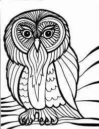 unique owl coloring pages to print gallery kid 5598 unknown