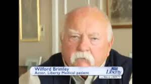 Wilford Brimley Diabeetus Meme - wilford brimley apple diabetus diabetes ice cream apple pie youtube