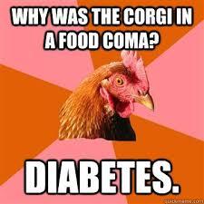 Food Coma Meme - coolest food coma meme why was the corgi in a food a diabetes anti