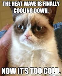 Heat Memes - the heat wave is finally cooling down cat meme cat planet cat