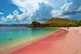 menarik dan ajaib 3 pantai berwarna pink ini ada di indonesia