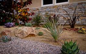Xeriscape Landscaping Ideas Drought Tolerant Landscaping Ideas From San Diego