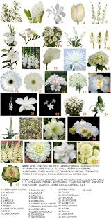 List Of Flowers by Best 25 Wedding Flower Guide Ideas On Pinterest Diy Wedding