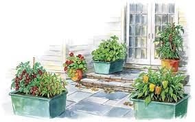 creative of patio vegetable garden containers container gardening