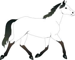coloring sheets of a horse coloring page of horse palim info