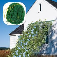 Support For Climbing Plants - 2017 4 sizes nylon trellis netting plant support net for climbing