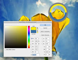 pick a color in photoshop cc dummies