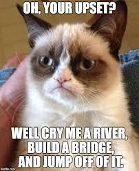 Build Your Meme - grumpy cat meme imgflip