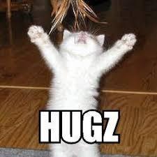 Cat Hug Meme - the eco cat lady speaks august 2015