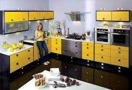 kitchen design l shaped layout home design inspirations