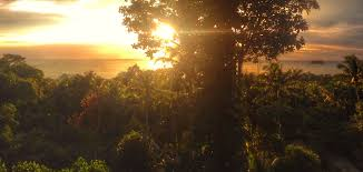 request a booking koh chang bungalows