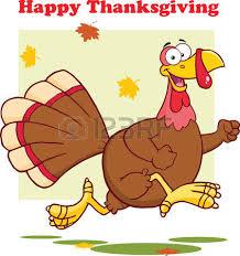 Free Happy Thanksgiving Image Happy Thanksgiving Greeting With Turkey Bird Running Illustration