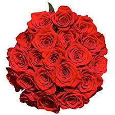flowers express send 50 roses fresh flowers express delivery for