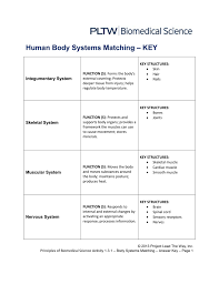 human body systems matching u2013 key