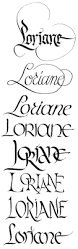 14 best typography images on pinterest hand lettering