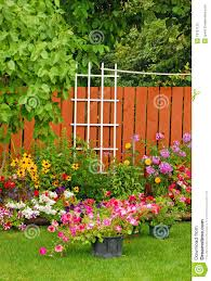 colorful backyard garden stock image image of petals 18757125