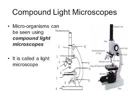 The Microscope Ppt Download