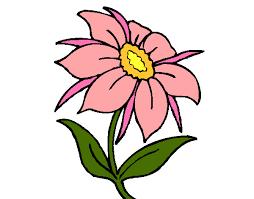 fiori disegni disegno fiore selvatico colorato da samell il 29 di ottobre 2012