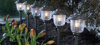 landscaping and lighting design in tampa bay lake jewel farms