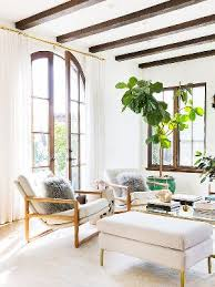 indoor plants inspiration and tips mydomaine