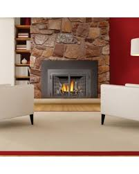 Direct Vent Fireplace Insert by Don U0027t Miss This Bargain Napoleon Direct Vent Gas Fireplace Insert