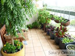 Kitchen Garden Design Ideas Download Apartment Balcony Garden Design Ideas
