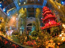 Botanical Gardens In Las Vegas Look Solutions Tiny Fx Fogger Welcomes New Year At The